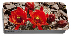 Portable Battery Charger featuring the photograph Bright Orange Cactus Blossoms by Phyllis Denton
