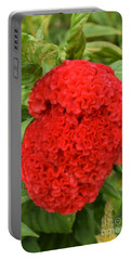 Bright Red Cockscomb Portable Battery Charger