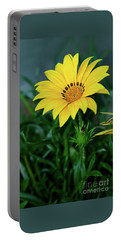 Portable Battery Charger featuring the photograph Bright Yellow Gazania By Kaye Menner by Kaye Menner