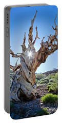 Bristlecone And Sun Portable Battery Charger