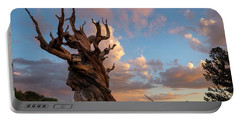 Bristlecone Pine Sunset Portable Battery Charger