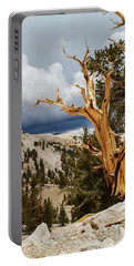 Bristlecone Pine Tree 8 Portable Battery Charger