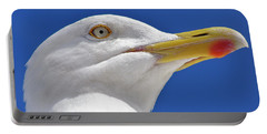 Portable Battery Charger featuring the photograph British Herring Gull by Terri Waters