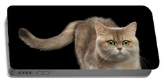 Brittish Cat With Curve Tail On Black Portable Battery Charger