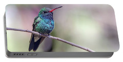 Broad-billed Hummingbird 2008-031718-1cr Portable Battery Charger