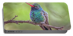 Broad-billed Hummingbird 3652 Portable Battery Charger