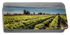 Broccoli Seed Portable Battery Charger by Robert Bales