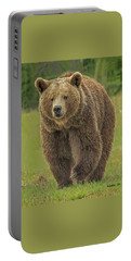 Brown Bear 1 Portable Battery Charger
