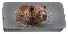 Brown Bear 10 Portable Battery Charger