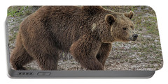 Brown Bear 6 Portable Battery Charger