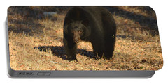 Black Bear Black Bear What Do You See Portable Battery Charger