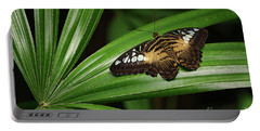 Brown Clipper Butterfly -parthenos Sylvia- On Frond Portable Battery Charger