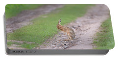 Brown Hare Cleaning Portable Battery Charger