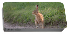 Brown Hare Listening Portable Battery Charger