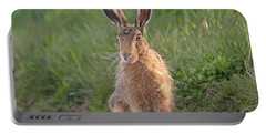 Brown Hare Sat On Track At Dawn Portable Battery Charger