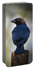 Brown-headed Cowbird Portable Battery Charger