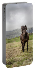 Portable Battery Charger featuring the photograph Brown Icelandic Horse by Edward Fielding