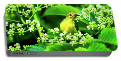 Brown Neck Sunbird Portable Battery Charger