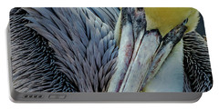 Portable Battery Charger featuring the photograph Brown Pelican by Bill Gallagher