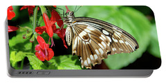 Brown Swallowtail Butterfly Portable Battery Charger