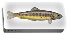 Brown Trout - Autochthonous - Indigenous - Salmo Trutta Morpha Fario - Salmo Trutta Fario Portable Battery Charger