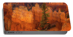 Bryce Canyon And Tree Portable Battery Charger