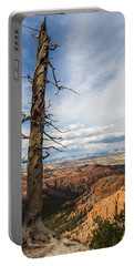 Bryce Canyon Tree Portable Battery Charger