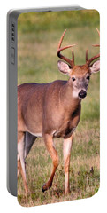 Portable Battery Charger featuring the photograph Buck by Debbie Stahre