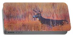 Buck Deer In Morning Sunlight Portable Battery Charger