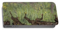 Portable Battery Charger featuring the photograph Budbreak In Carneros by Carol Lynn Coronios