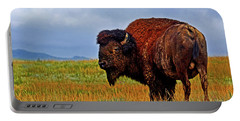 Portable Battery Charger featuring the photograph Buffalo 006 by George Bostian