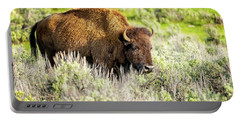 Buffalo At Yellowstone Np_grk6664_05212018-2 Portable Battery Charger