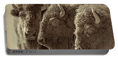 Portable Battery Charger featuring the photograph Trio American Bison Sepia Brown by Jennie Marie Schell