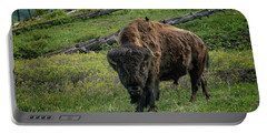 Buffalo With Cow Birds At Yellowstone_grk6876_05222018 Portable Battery Charger