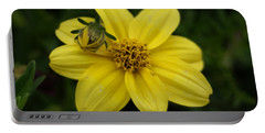 Portable Battery Charger featuring the photograph Bugs Life by Heidi Poulin