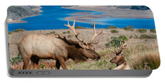 Bull Elk Above Tomales Bay Portable Battery Charger