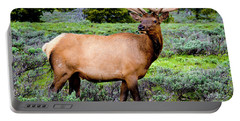 Bull Elk Portable Battery Charger