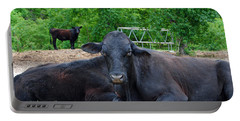 Bull Relaxing Portable Battery Charger