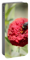 Bumble Bee On Zinnia Portable Battery Charger