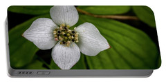 Portable Battery Charger featuring the photograph Bunchberry Dogwood On Gloomy Day by Darcy Michaelchuk