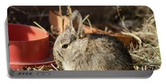 Bunny In The Garden Portable Battery Charger
