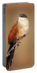 Burchell's Coucal - Rainbird Portable Battery Charger