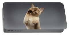 Burma Cat Paws Snout Covers On Gray Portable Battery Charger