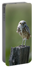 Portable Battery Charger featuring the photograph Burrowing Owl by Gary Lengyel