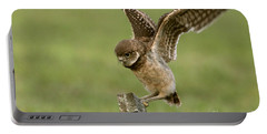 Burrowing Owl - Learning To Fly Portable Battery Charger