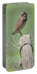 Burrowing Owl On Post Portable Battery Charger