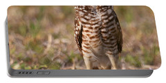 Portable Battery Charger featuring the photograph Burrowing Owl Standing Tall by Myrna Bradshaw