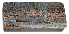 Portable Battery Charger featuring the photograph Bushed Bobcat by Al Powell Photography USA