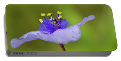 Busy Visitor - Syrphid Fly On Spiderwort Portable Battery Charger by Jane Eleanor Nicholas