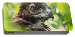 Buteo Jamaicensis Portable Battery Charger